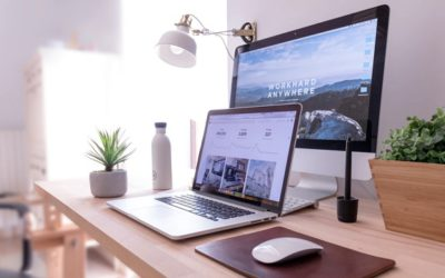 10 Most Important Website Design Tips